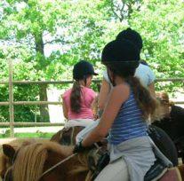 poneys montés