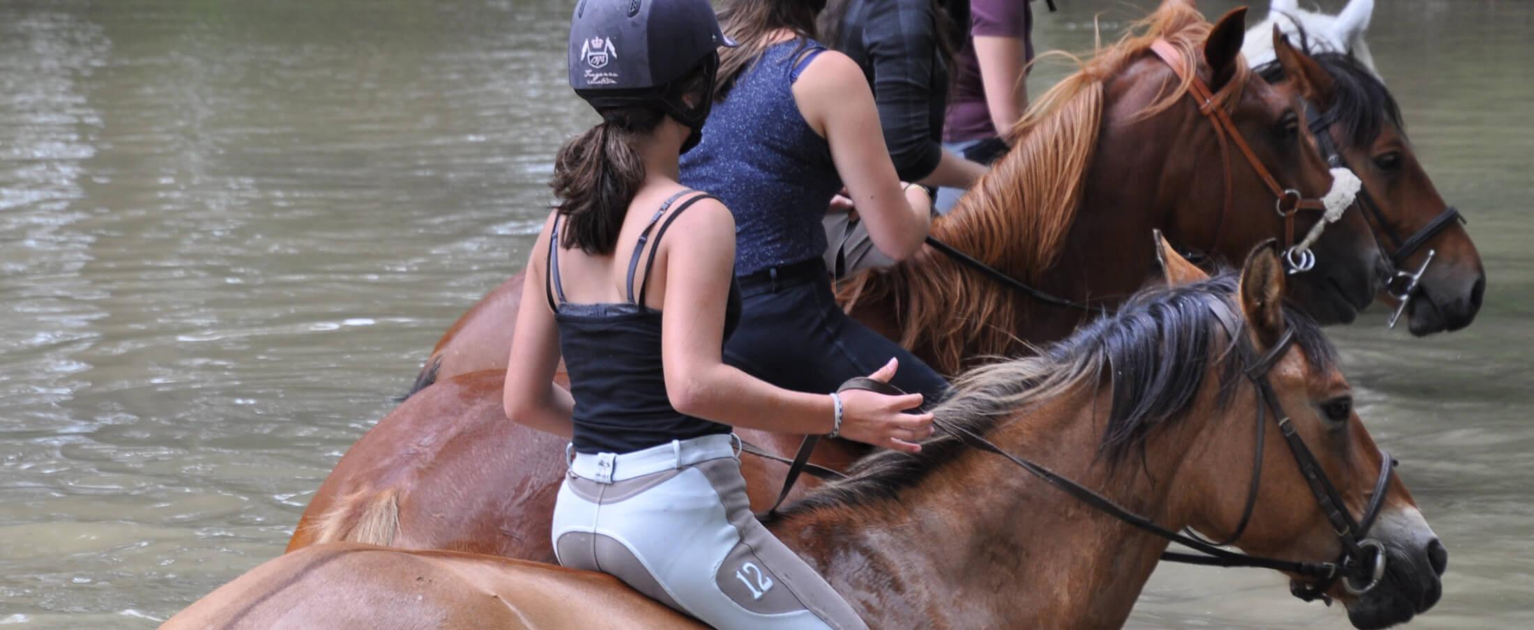 baignade a cheval
