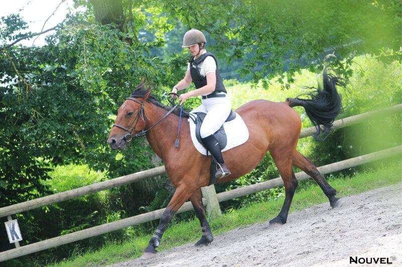 Stage cheval à la Ferme équestre du Tréglodé